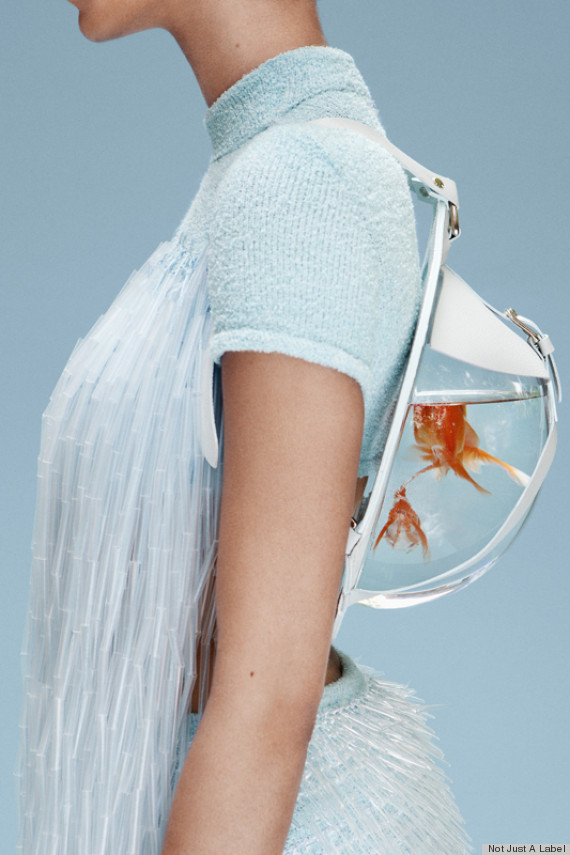 fish tank backpack side view